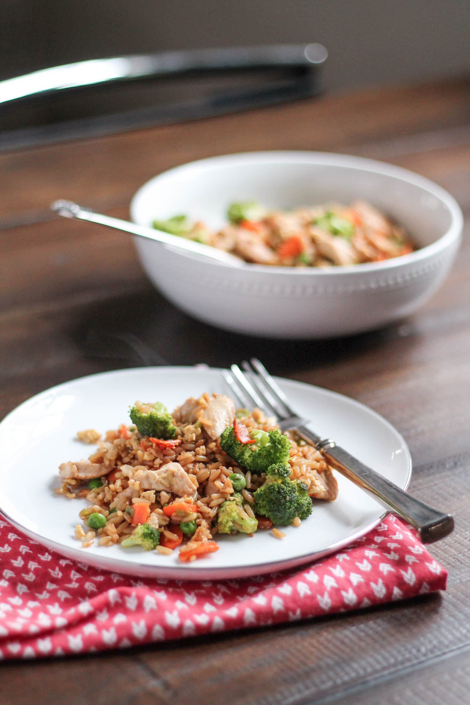 Chicken and Vegetable Fried Rice-3
