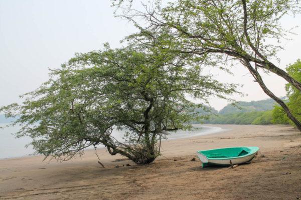 El Mangroove Costa Rica-4