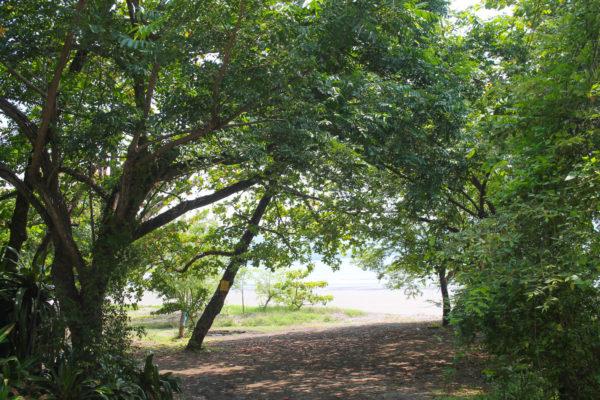 Latitude 10 Costa Rica-5