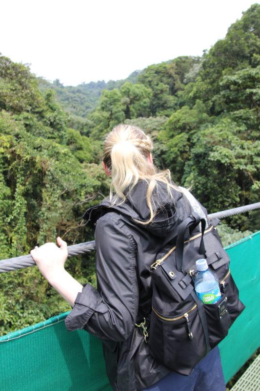 Costa Rica Hanging Bridge 2