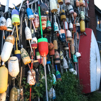 What's New In Town – The Kennebunkport Festival