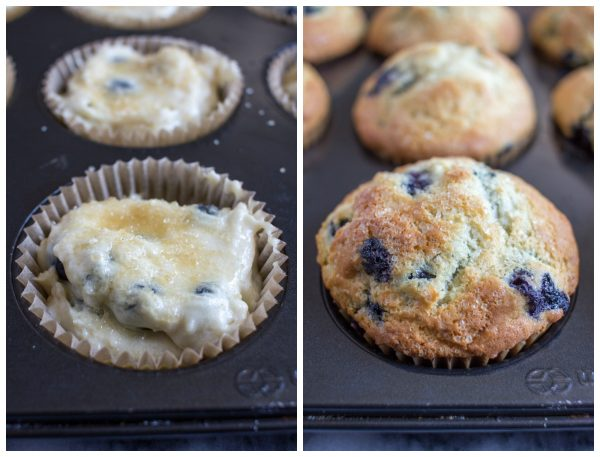 the best muffin recipe!