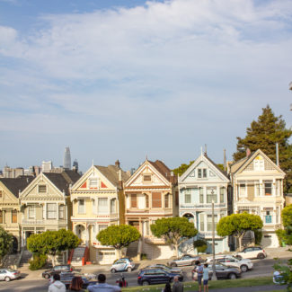 The San Francisco Travel Guide