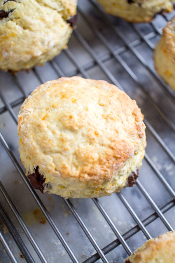 Orange Dark Chocolate Scones - a super simple recipe