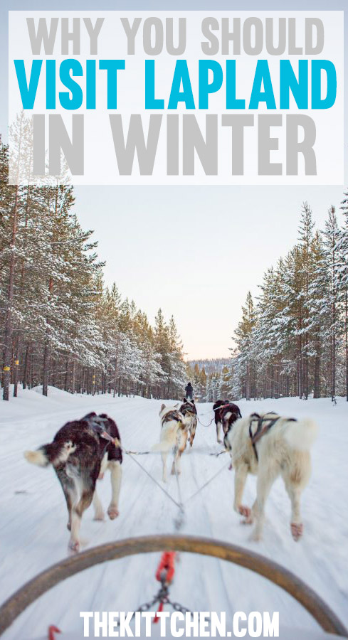 A guide of what to do in Lapland in Winter