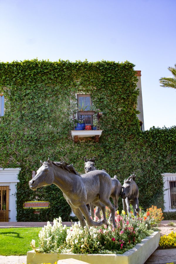 What to do in Scottsdale - exploring Old Town