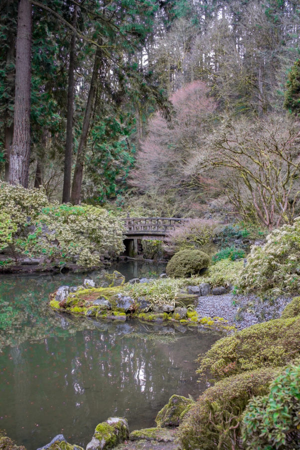 What to do in Portland, Oregon - The Portland Japanese Garden