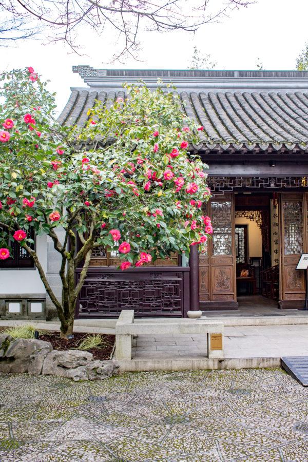 What to do in Portland, Oregon - Lan Su Chinese Garden