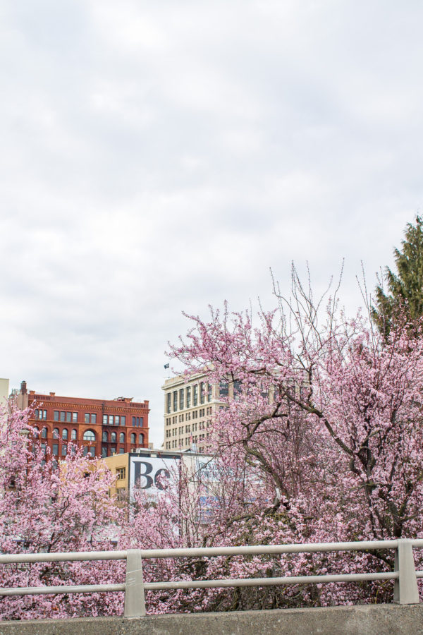 What to do in Portland, Oregon
