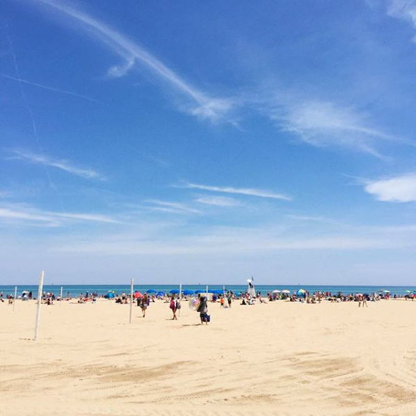 20 Best Things to do in Chicago in Summer
