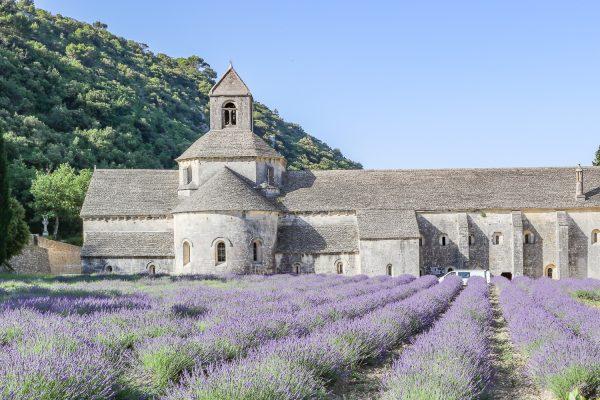 gordes lavender 2