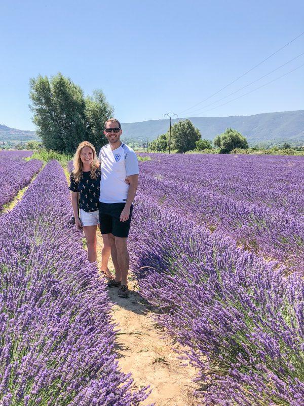 lacoste lavender 2