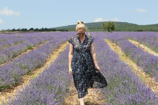 seeing the lavender in sault 5
