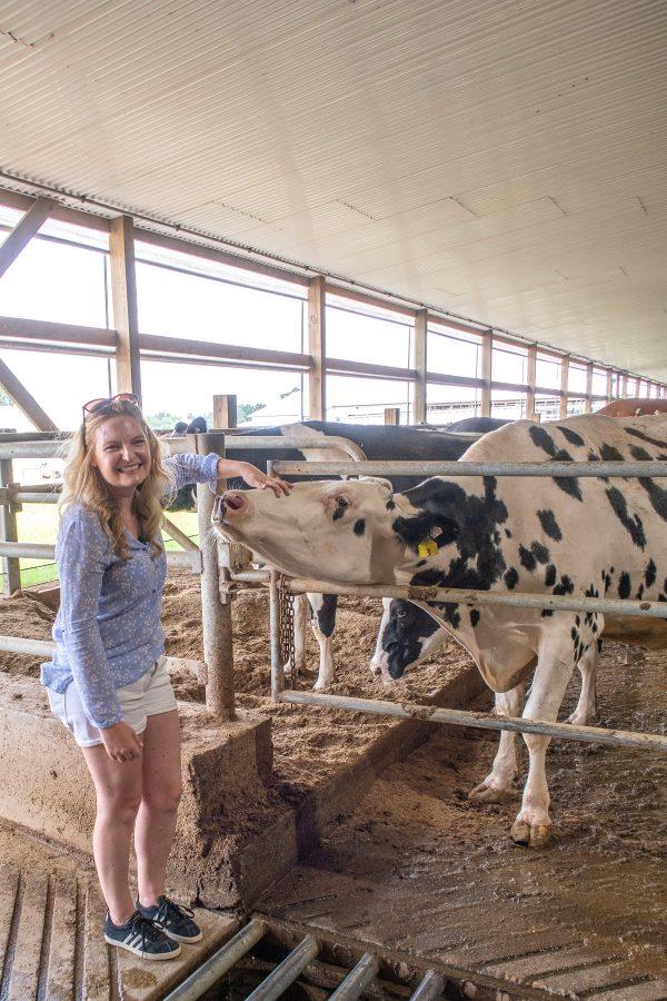 Illinois Farm Families Hildebrandt Farm 6