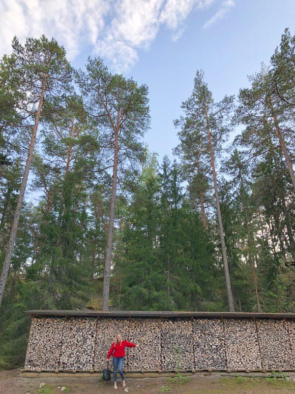 Finland 2018 16