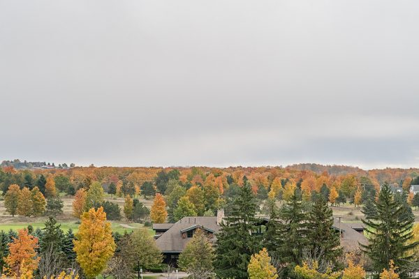 Traverse City Fall 10