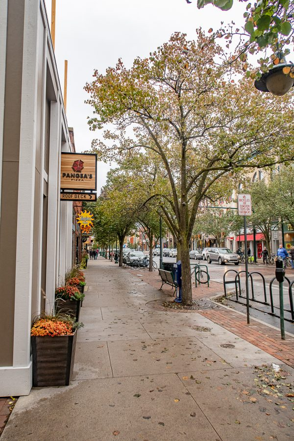 What to do in Traverse City - Downtown