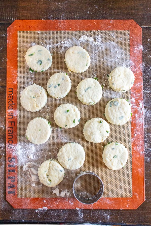 Green Onion and Cheddar Biscuits are easy to make with just 20 minutes of active preparation time. These biscuits are the ideal combination of buttery and cheesy, with a nice fresh flavor from the green onion.