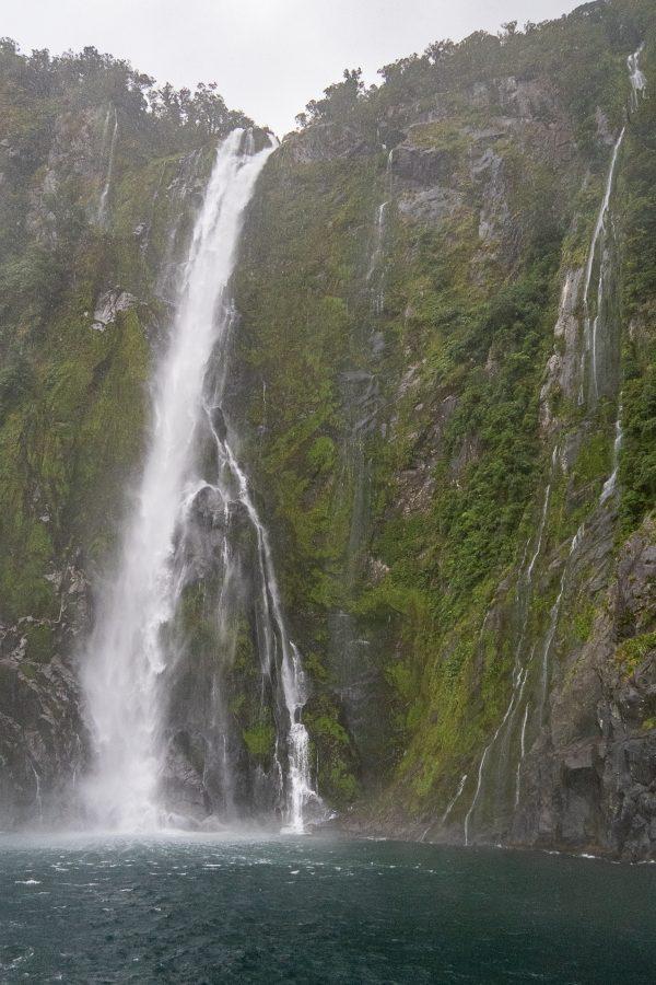 New Zealand 31