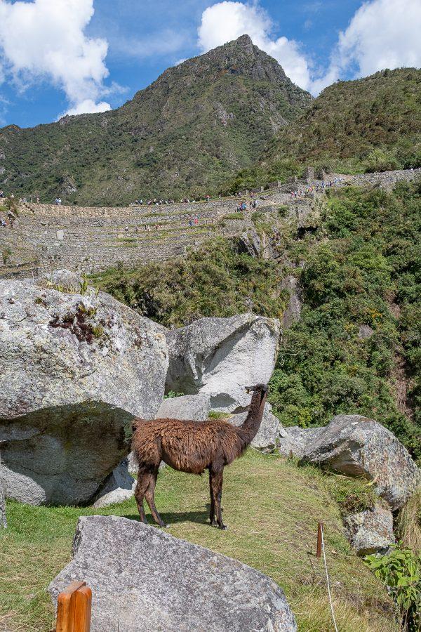 Peru 32