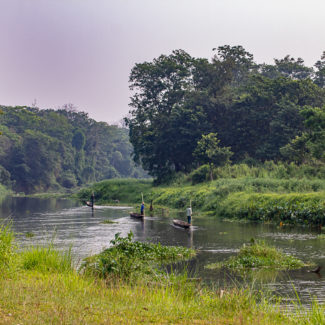 A Jungle Safari in Chitwan Nepal