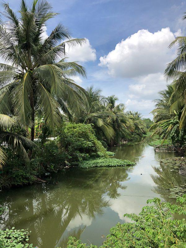 Vietnam 23