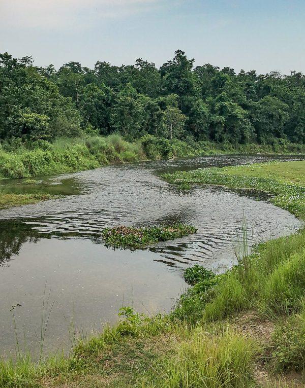 Chitwan 3