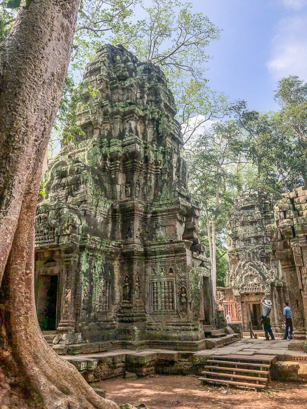 What to do in Siem Reap Ta Prohm 2