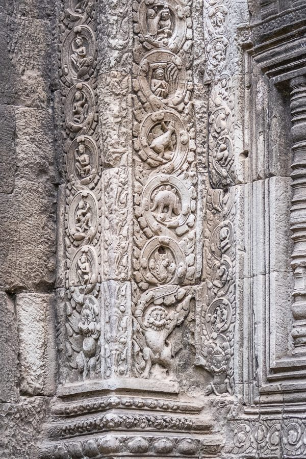 What to do in Siem Reap Ta Prohm