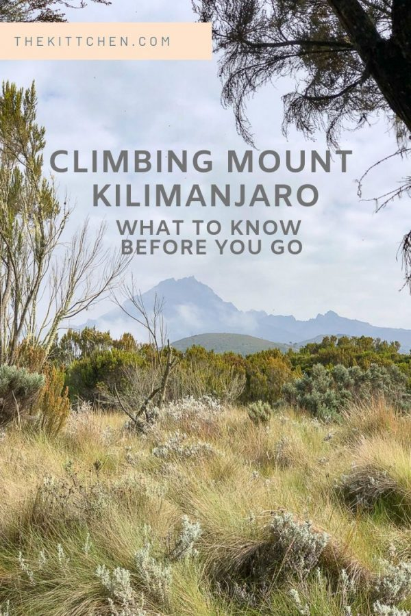 Climbing Mount Kilimanjaro - what to know before you go