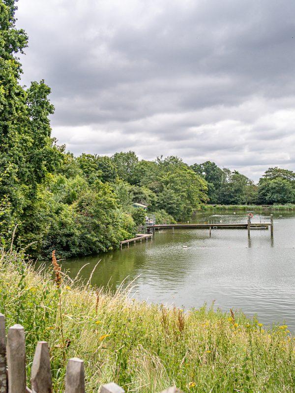 Hampstead Heath Swimming Pond