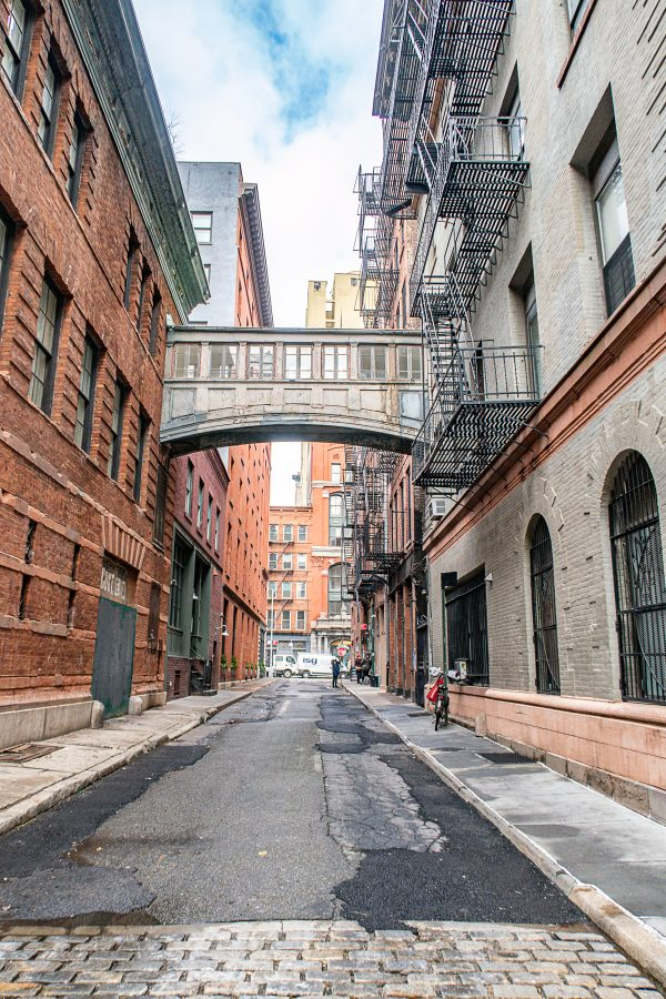 What to do in Tribeca 4